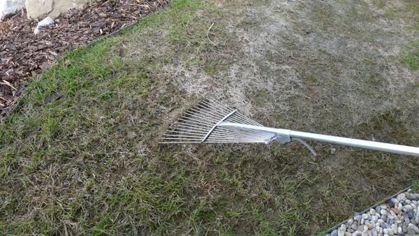 5. Regenerace trávníku po zimě krok za krokem: